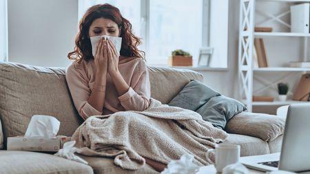 Zoo u vás doma aneb Jak často prát ručníky a utěrky, abych na nich nežily bakterie? Budete sedivit!